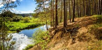 夏天风景在乌拉尔,鄂毕河,俄罗斯 图库摄影