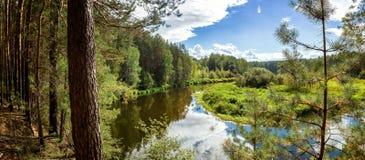 夏天风景在乌拉尔,鄂毕河,俄罗斯 免版税图库摄影
