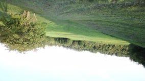 夏天风景在城市公园 照相机的圆自转方式的示范在常平架的 在a的夏天风景 股票视频