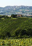 夏天风景在3月(意大利) 图库摄影