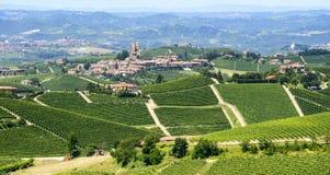 夏天风景在Langhe (意大利) 免版税库存照片