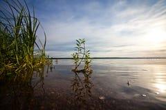 夏天风景河和天空 免版税库存图片
