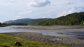 夏天风景河和山景在天空的背景中 股票视频