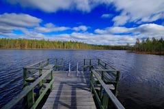 夏天风景的结尾从芬兰的 杉木与湖ans深蓝天空的森林海岸与白色云彩 从nort的美好的风景 免版税库存照片