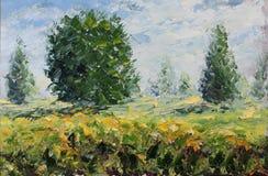 夏天风景,草,植被,在领域的树,云彩 免版税库存图片