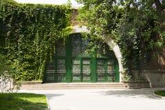 夏天风景,绿色叶子,屋子,阳光 免版税库存照片