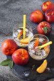 夏天饮食冷的饮料:戒毒所纯净的水用油桃和冰 免版税库存图片