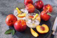 夏天饮食冷的饮料:戒毒所纯净的水用油桃和冰 免版税库存照片