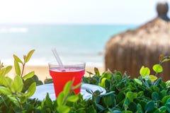 夏天,一杯新鲜的汁液,与冰,从在海滩的红色热带水果,在绿草,反对海 库存照片