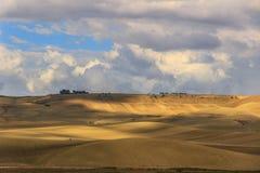 夏天:农村风景 在普利亚和巴斯利卡塔之间:与玉米田和农舍的小山 意大利 免版税库存照片