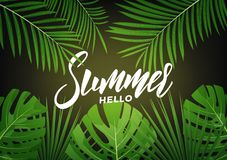 夏天 与字法和回归线密林的现代设计布局离开 夏天异乎寻常的背景 图库摄影