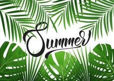 夏天 与异乎寻常的palnts的热带背景 夏天销售的,促进,党事件横幅 免版税库存图片