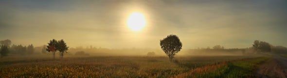 夏天黎明大格式全景  图库摄影