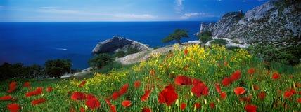 夏天黑海 库存照片