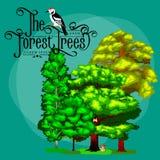 夏天绿色林木和小动物在狂放的自然 动画片传染媒介集合树在室外公园 室外树 免版税库存照片