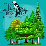 夏天绿色林木和小动物在狂放的自然 动画片传染媒介集合树在室外公园 免版税图库摄影