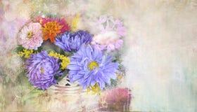夏天紫色翠菊束, Absract背景 库存图片