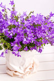 夏天紫色花装饰 免版税库存照片