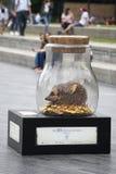 夏天2016年,伦敦街道变换以不可思议的巨型梦想瓶子庆祝Roald Dahlas 100th生日和 免版税库存图片