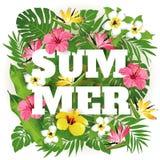 夏天 向量例证