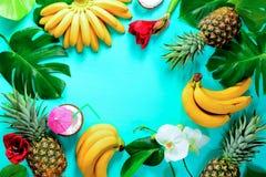 夏天colorfull概念用热带水果和花,空间 库存图片