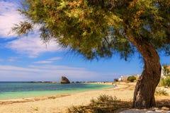夏天Salento海岸:Torre梵语海滩(莱切) 意大利(普利亚) 免版税库存照片
