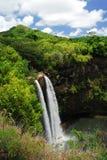 夏威夷全景瀑布 库存图片