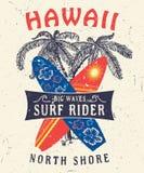 夏威夷北部岸海浪车手 库存图片