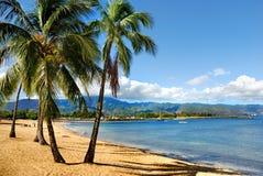 夏威夷北部岸 库存照片
