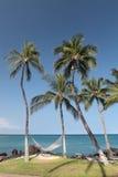 夏威夷天堂 库存照片