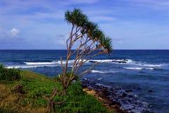 夏威夷奥阿胡岛海岸线 免版税库存照片