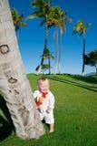 夏威夷奥阿胡岛 库存图片
