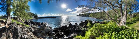 夏威夷密林全景 免版税库存照片
