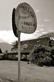 夏威夷小屋老菠萝 图库摄影
