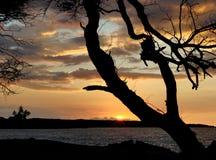 夏威夷日落3 免版税库存照片