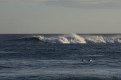 夏威夷波浪 图库摄影