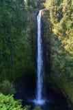 夏威夷瀑布 库存图片