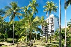 夏威夷的豪华旅馆有棕榈树的 免版税库存照片