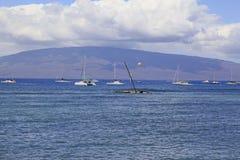 夏威夷美丽如画的毛伊 库存照片