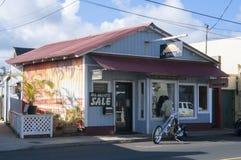 夏威夷美术画廊夏威夷美国 库存图片
