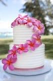 夏威夷花蛋糕 免版税库存图片