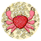 夏威夷螃蟹 免版税图库摄影
