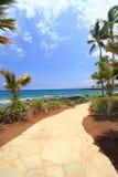夏威夷走道 免版税库存图片