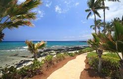 夏威夷走道 图库摄影