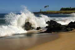 夏威夷飞溅 免版税库存图片