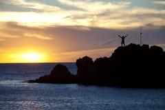 夏威夷黑人岩石潜水者 免版税库存照片