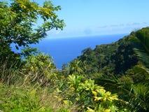 夏威夷-向汉纳的路 库存图片