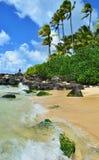 夏威夷 免版税图库摄影