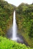 夏威夷Akaka秋天-夏威夷瀑布 免版税库存照片