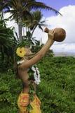 夏威夷hula 免版税库存图片